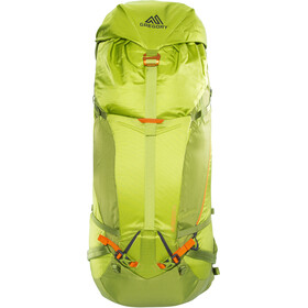 Gregory Alpinisto 50 Backpack size M lichen green